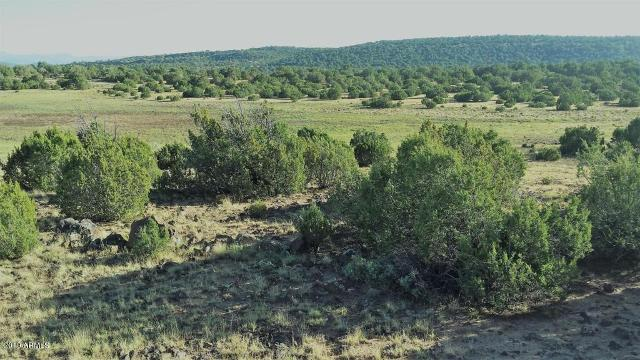 163 8235 County Rd, Vernon, 85940, AZ - Photo 1 of 3