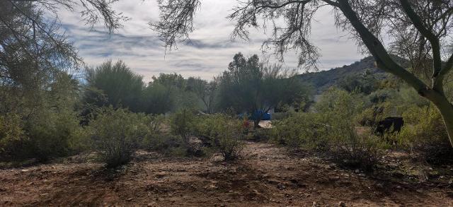 6441 E Cheney Dr, Paradise Valley, 85253, AZ - Photo 1 of 2