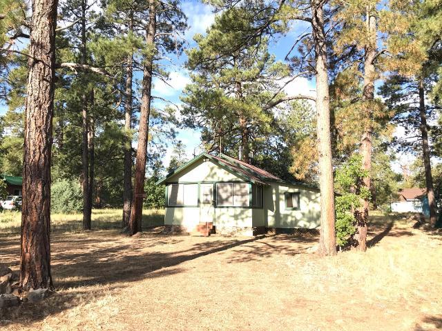 179 Forest Service 90b Rd, Mormon Lake, 86038, AZ - Photo 1 of 35