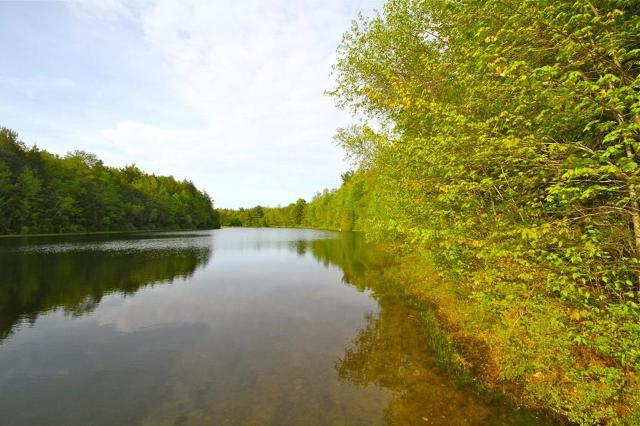 60 Otter Pond Trl, Tolland, 01034, MA - Photo 1 of 8