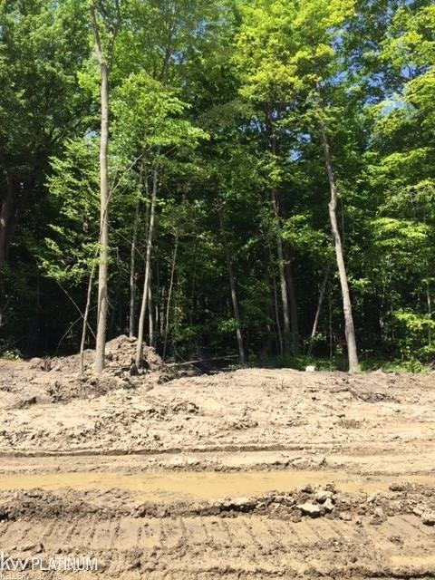 Lot 22 Woodside Dr, Richmond, 48062, MI - Photo 1 of 9