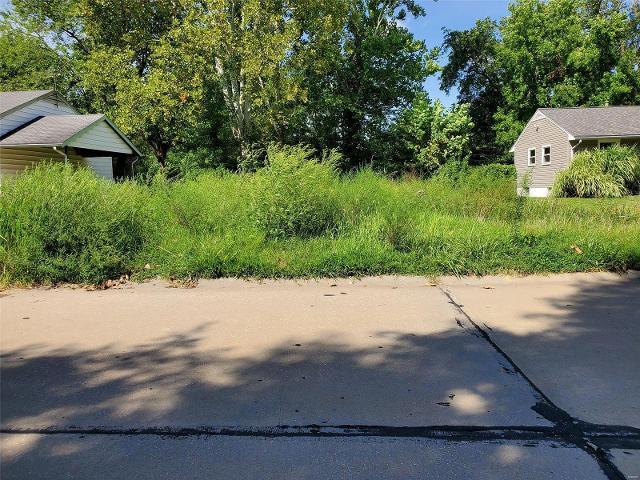 10643 Dunkeld, St Louis, 63137, MO - Photo 1 of 4