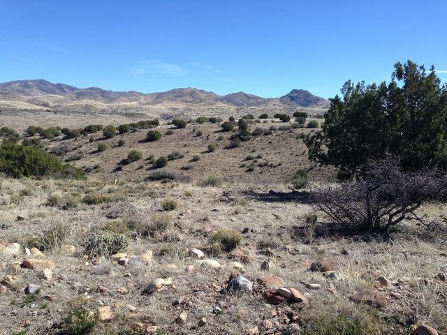 Lot 237 Prairie Schooner --, Wikieup, 85360, AZ - Photo 1 of 9