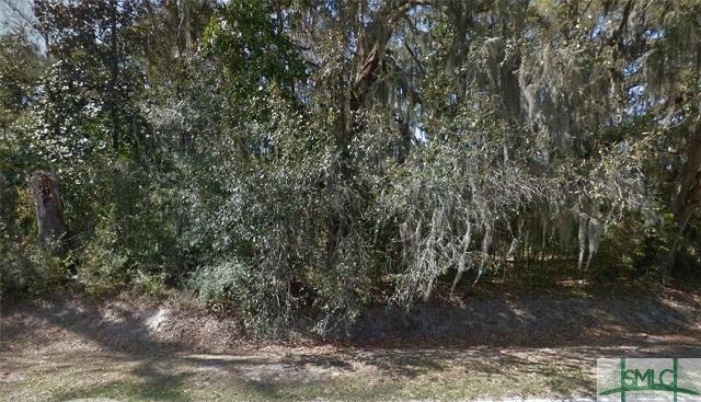 121 Salt Creek, Garden City, 31405, GA - Photo 1 of 1