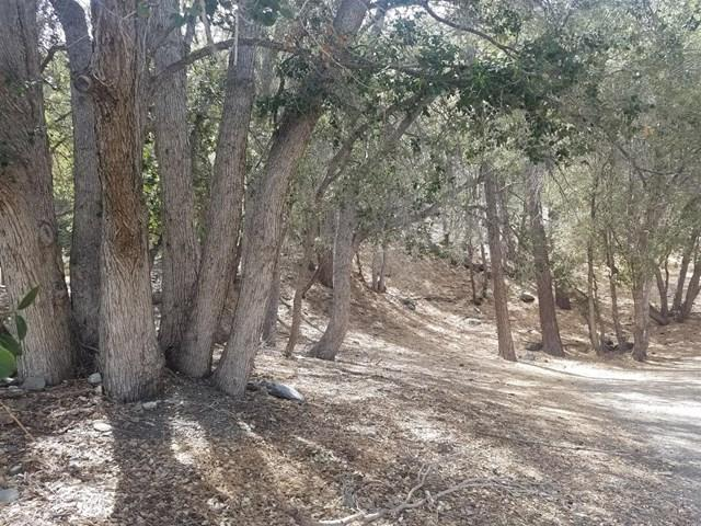 0 Desert View Ln, Wrightwood, 92397, CA - Photo 1 of 2