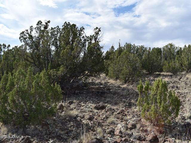 8563 Loveridge, Show Low, 85901, AZ - Photo 1 of 11