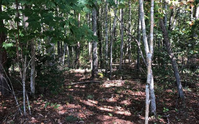 LOT76 Notla, Blairsville, 30512, GA - Photo 1 of 3