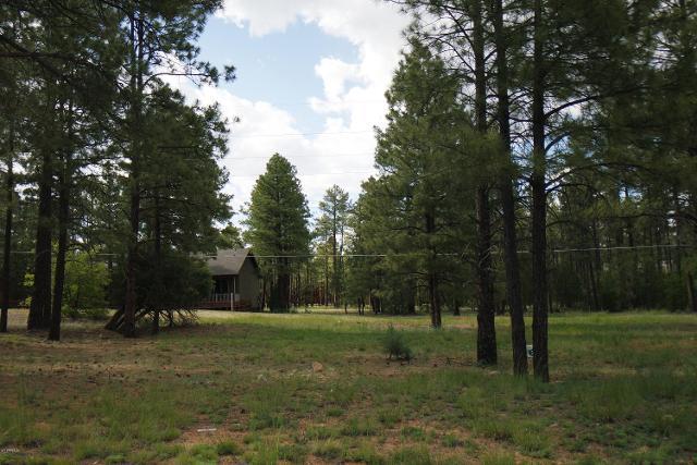 5004 Panorama Ct, Lakeside, 85929, AZ - Photo 1 of 7