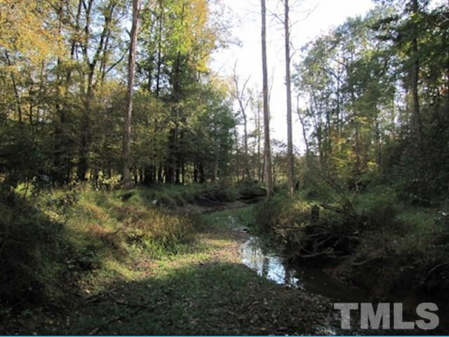Lot 8 Preservation Forest Ln, Efland, 27243, NC - Photo 1 of 3