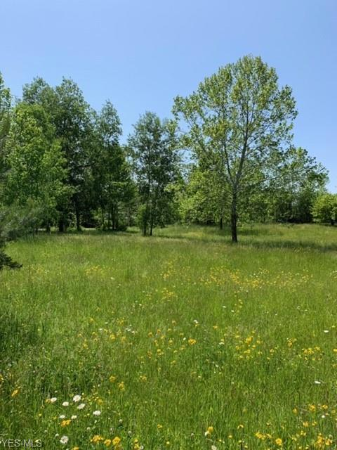 VL Chagrin River Rd, Solon, 44022, OH - Photo 1 of 4