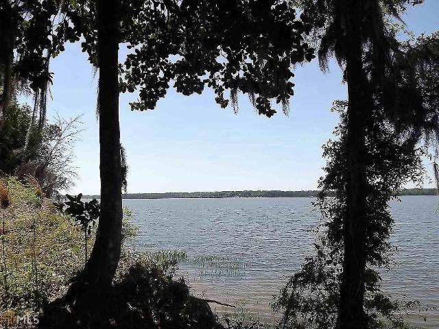 0 Moore Meadow Dr, Georgetown, 39854, GA - Photo 1 of 3