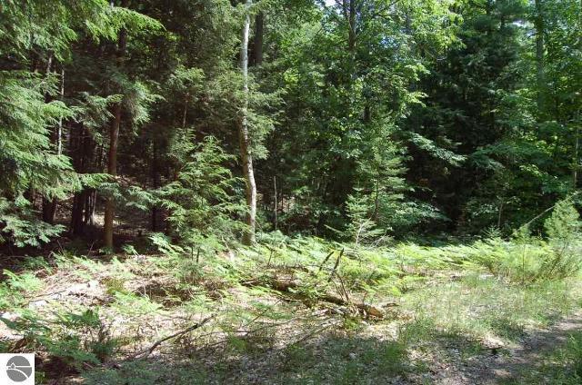 0000 Wildwood, Kewadin, 49627, MI - Photo 1 of 12