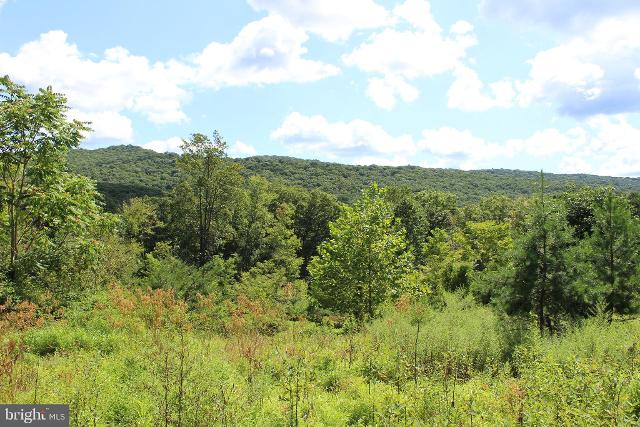 Lot 6 Cresap Mill, Oldtown, 21555, MD - Photo 1 of 52