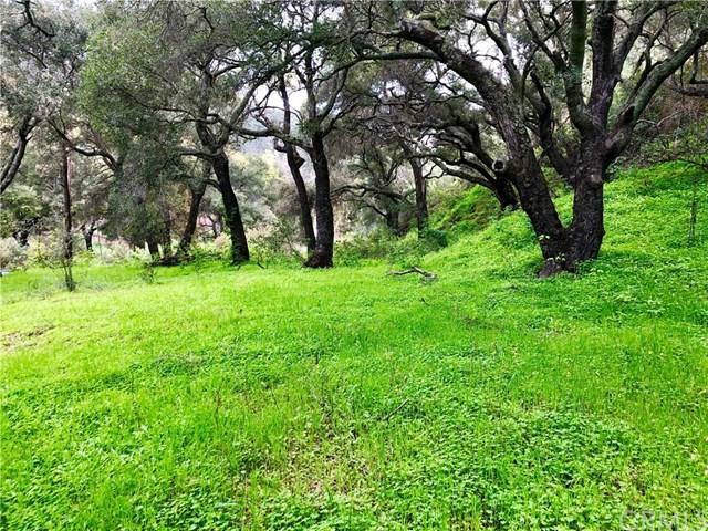 0 Colson Canyon Rd, Santa Maria, CA - Photo 1 of 50