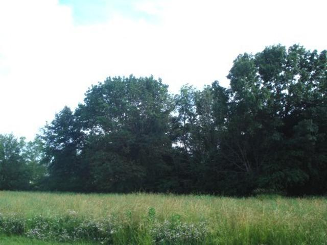 Lot 431 Lake Wildwood, Varna, 61375, IL - Photo 1 of 25