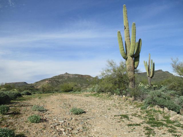 33080 Matala Way, Black Canyon City, 85324, AZ - Photo 1 of 19