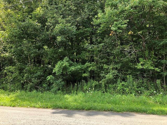 0 Back Creek, Champion, 15622, PA - Photo 1 of 1