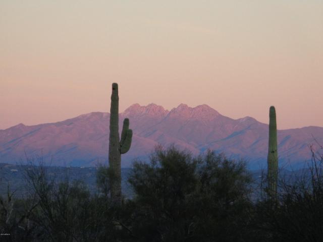 10401 N Saguaro Blvd Unit 117, Fountain Hills, 85268, AZ - Photo 1 of 28