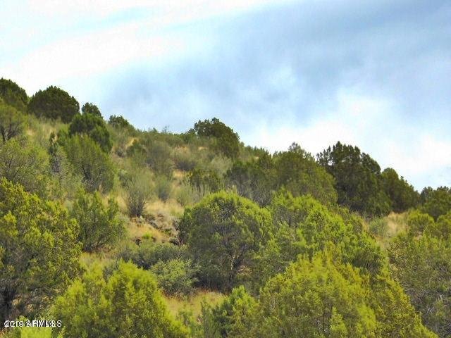 Lot 1339 Peaceful View Rd, Seligman, 86337, AZ - Photo 1 of 9