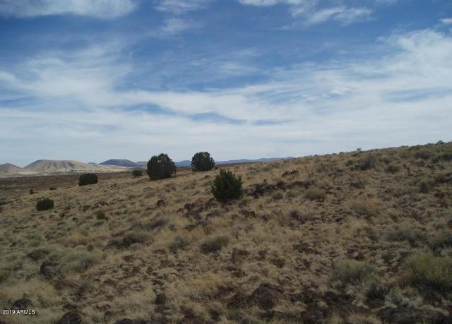 40 Acr 8206 --, Concho, 85924, AZ - Photo 1 of 8
