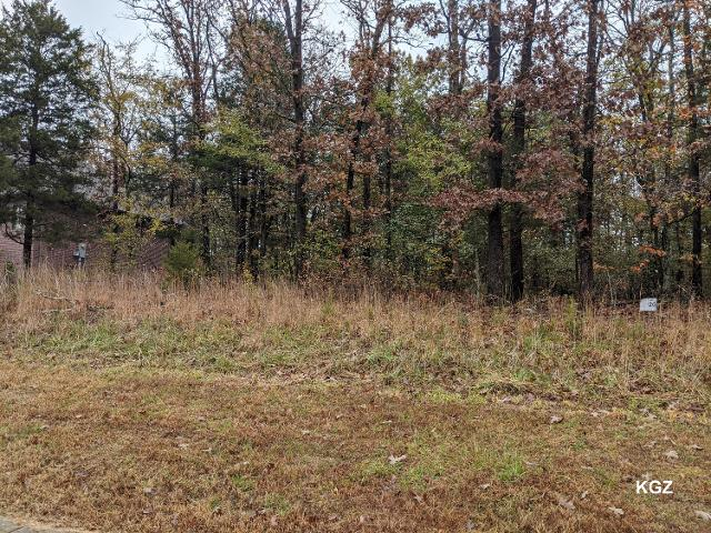 Lot 20 Beth Page Ct, Branson, 65616, MO - Photo 1 of 2