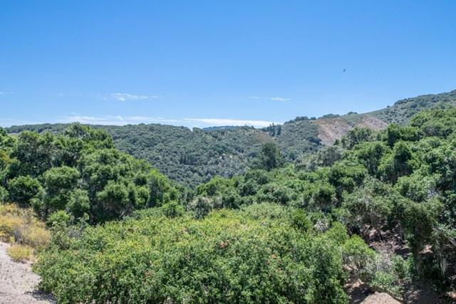 245 Calle De Los Agrinemsors, Carmel Valley, 93924, CA - Photo 1 of 46
