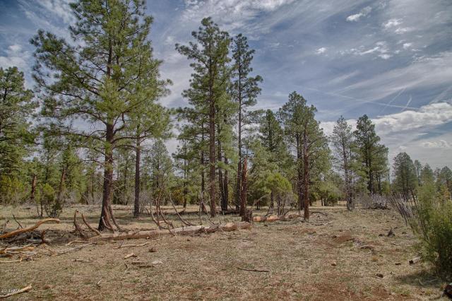 0 W Coyote Ln, Lakeside, 85929, AZ - Photo 1 of 17