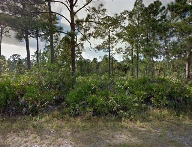 203 Wells, Lehigh Acres, 33936, FL - Photo 1 of 2