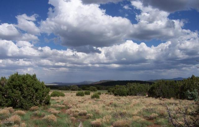 39 Acr 8206 --, Concho, 85924, AZ - Photo 1 of 8