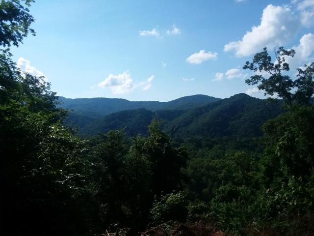 000 Highpoint, Roan Mountain, 37687, TN - Photo 1 of 9