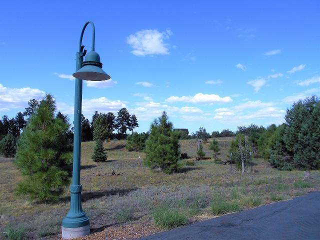 2254 Big Bear Cir, Overgaard, 85933, AZ - Photo 1 of 7