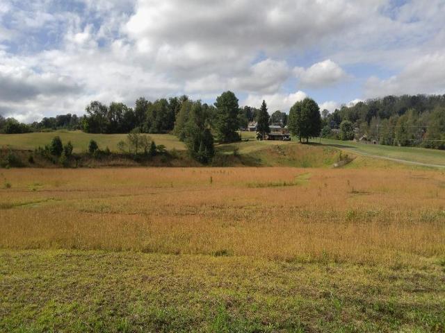 TBD Mountain View, Johnson City, 37604, TN - Photo 1 of 9