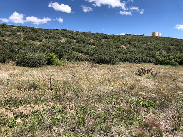 18079 S Henley Ave, Peeples Valley, 86332, AZ - Photo 1 of 8