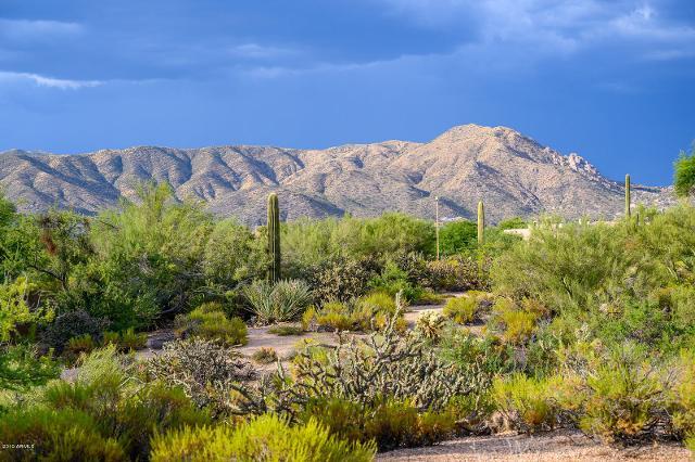 39805 102nd, Scottsdale, 85262, AZ - Photo 1 of 50