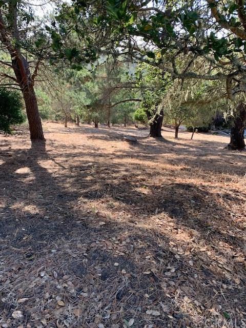 0 Richard Ave, Cambria, 93428, CA - Photo 1 of 4