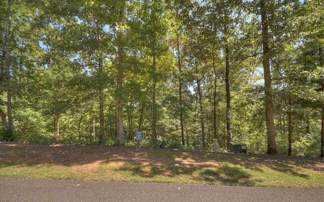 LT 27 Harris Creek, Ellijay, 30540, GA - Photo 1 of 11