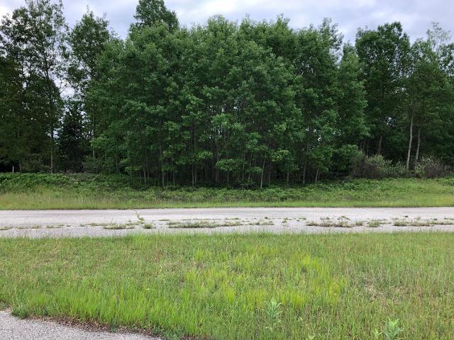 8514 Blackberry Ct, Canadian Lakes, 49346, MI - Photo 1 of 15