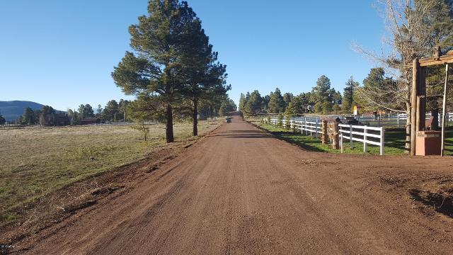 213 High Point Dr, Mormon Lake, 86038, AZ - Photo 1 of 17