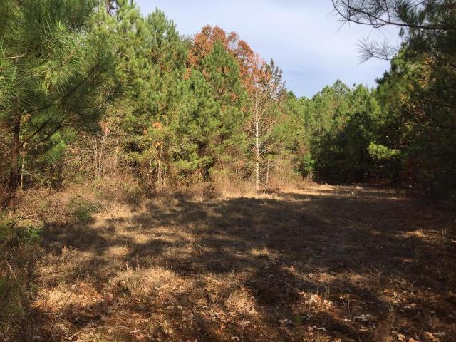 990 Hemphill, Summerville, 30747, GA - Photo 1 of 3