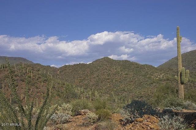 45011 Cottonwood Canyon, Cave Creek, 85331, AZ - Photo 1 of 34