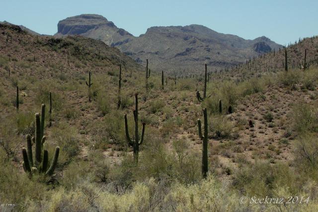 0 Lake Pleasant, Morristown, 85342, AZ - Photo 1 of 21