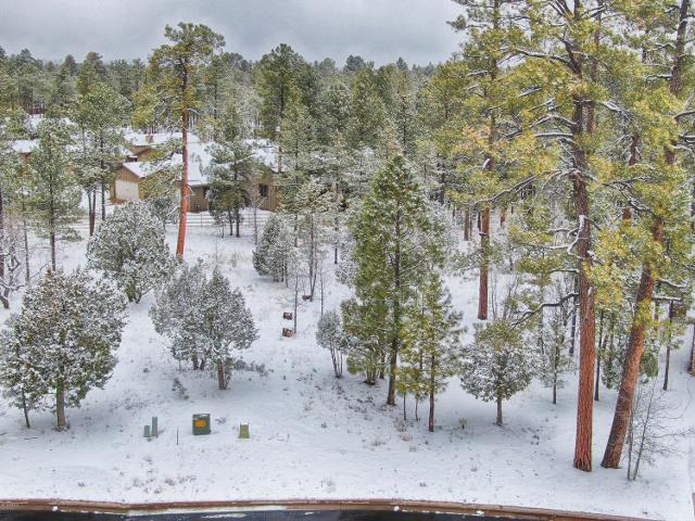 5246 Mountain Gate Cir, Lakeside, 85929, AZ - Photo 1 of 7