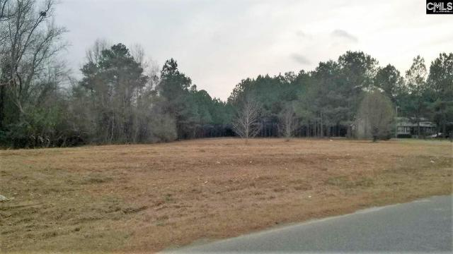 245 Country UnitLot 64, Hopkins, 29061, SC - Photo 1 of 1