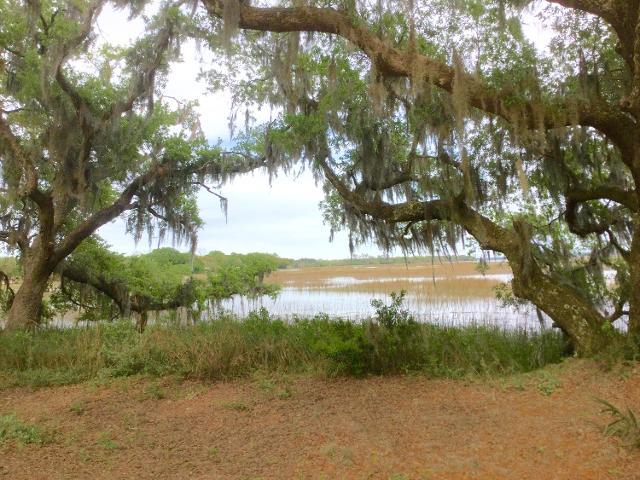 0 Meggett Creek, Meggett, 29449, SC - Photo 1 of 7
