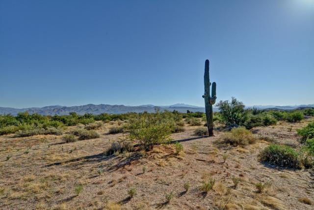 280XX N 164th St, Scottsdale, 85262, AZ - Photo 1 of 9