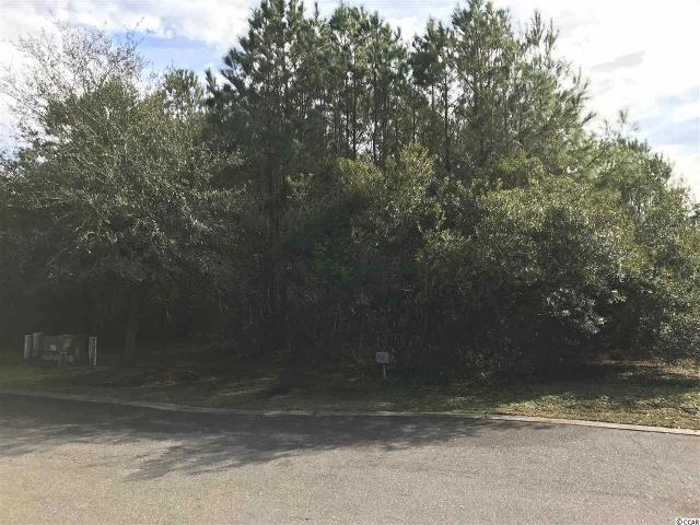 Lot 06 Permit Ct. Ct, Georgetown, 29440, SC - Photo 1 of 7