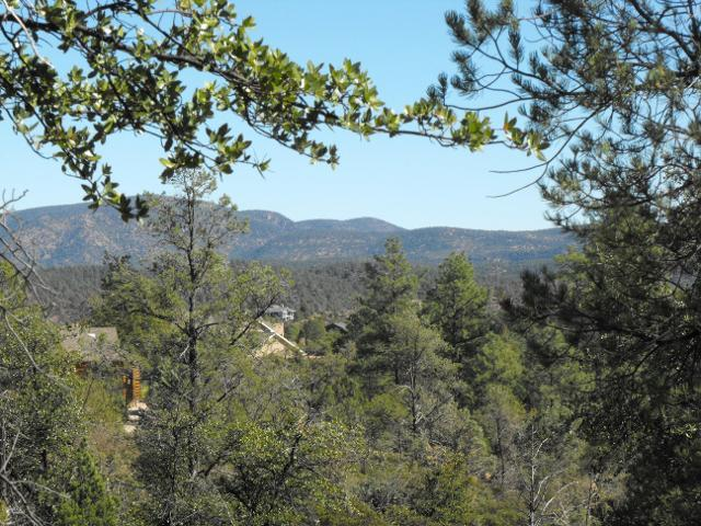 45 Saddleback Trl, Star Valley, 85541, AZ - Photo 1 of 10
