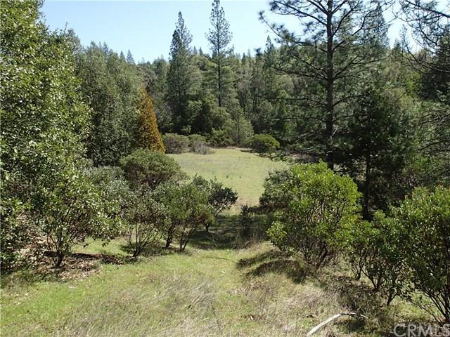 0 Jatko Rd, Berry Creek, CA - Photo 1 of 15