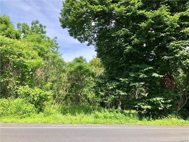 Forest, Wallkill, 12589, NY - Photo 1 of 7