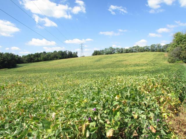 TBD Gravel Hill Rd, Limestone, 37681, TN - Photo 1 of 27